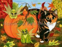 Calicos Mystical Pumpkin
