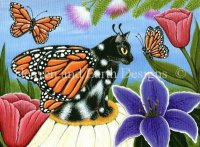 Monarch Butterfly Fairy Cat